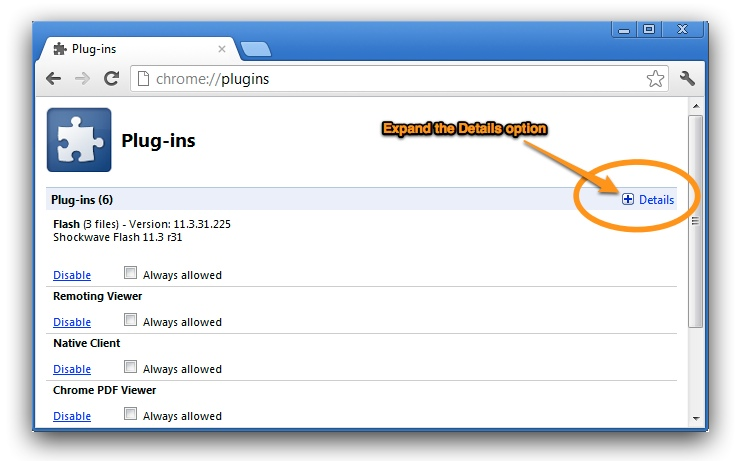 Chrome plugins expand details
