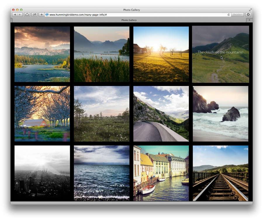 Hummingbird Photo Gallery For WordPress